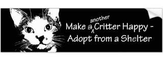homeless pet adoption bumper sticker