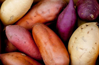 How to Cultivate Sweet Potatoes to Complete and Beneficial Results Complete