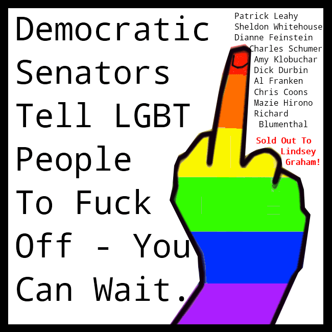 A graphic that depicts the middle finger that Democratic Senators have given to the gay community.