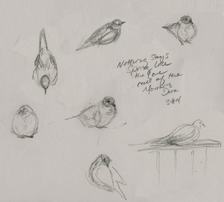 tiny thumbnail sketches that take only seconds to draw help capture a bird's personality.