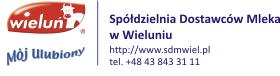 http://www.sdmwiel.home.pl/