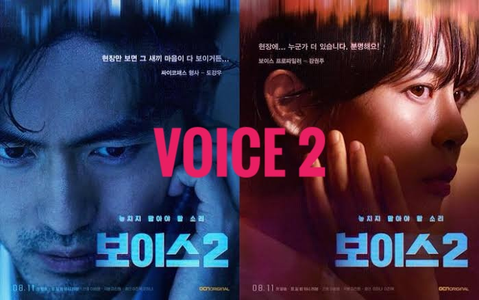 Download Drama Korea Voice 2 Sub Indo Batch