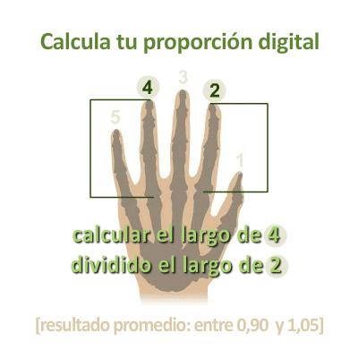 proporción digital