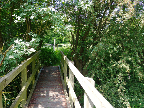Photograph of the footpath. Take the wooden footbridge over the River Colne Image by Hertfordshire Walker released under Creative Commons BY-NC-SA 4.0