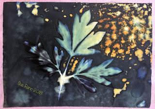 Wet cyanotype_Sue Reno_Image 362
