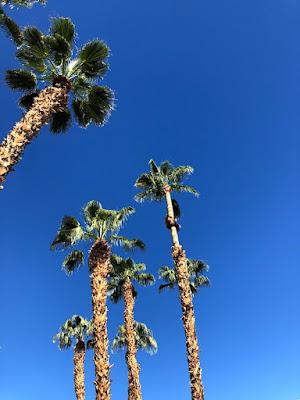 2018 California PALM SPRINGS part6