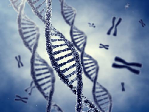Biotech Nigeria