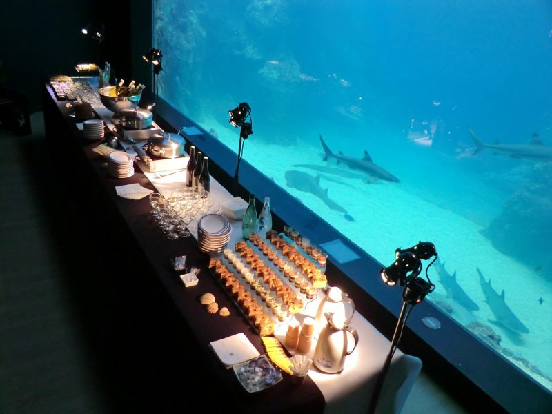 aquarium lyon vip