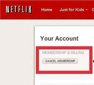 Netflix account login and password