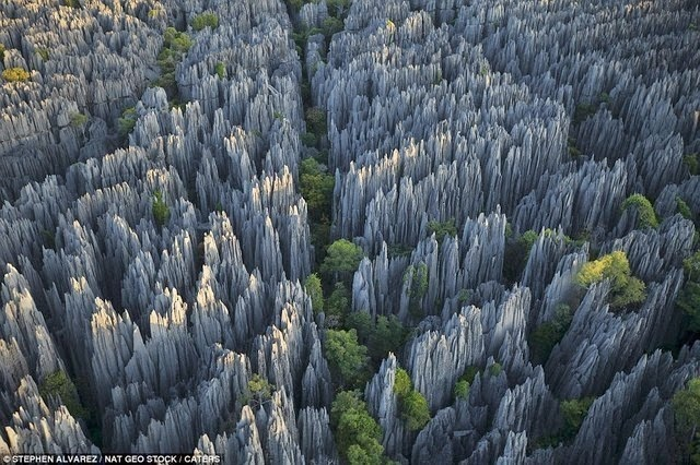 #14. The Stone Forest of Madagascar. - 19 Secret Travel Destinations You Never Knew Existed… Almost Nobody Knows About #17.