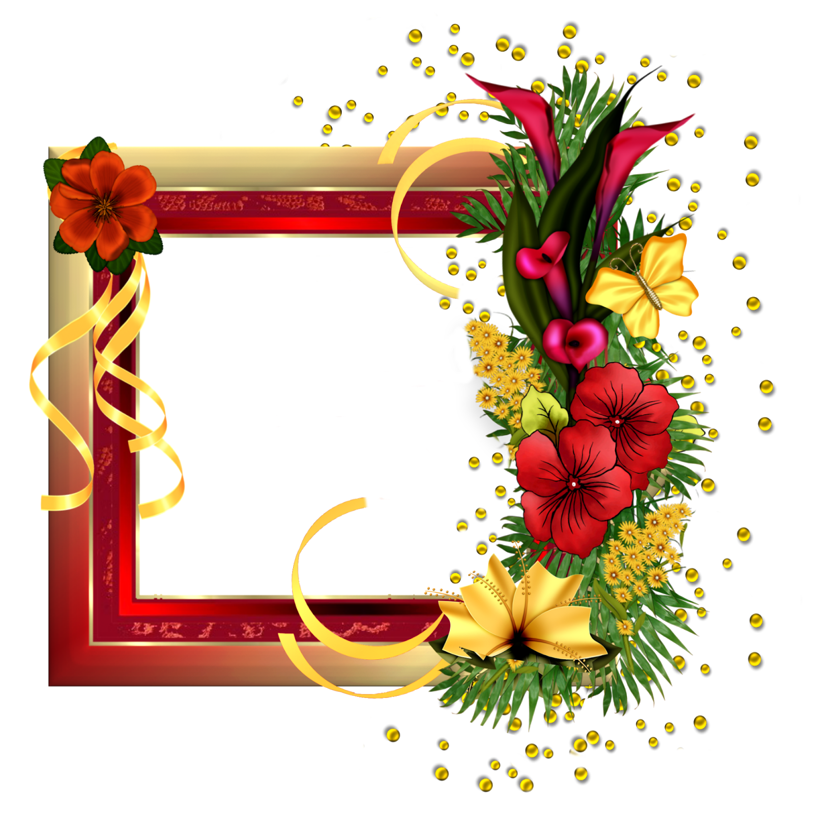 Beauty In Frame: Photoshop.png Frames Wallpapers Designs: Beautiful-Flowers