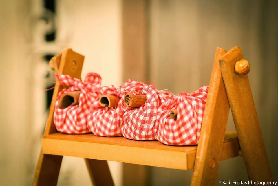 festa-infantil-vintage-picnic-trouxinhas