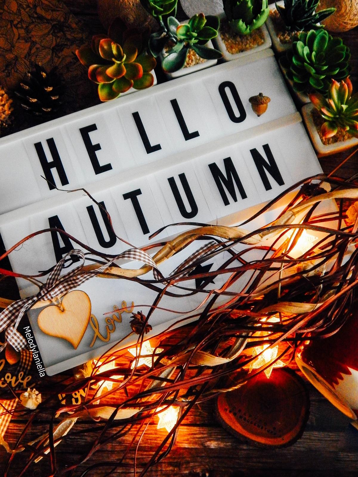 jesienne dekoracje bonprix liście wazony jesienne dodatki do mieszkań i domów wrzosy, sukulenty bonprix, tablice świetlne, cotton balls światełka do mieszkań szyszki kasztany dekoracje halloween autumn decoration home