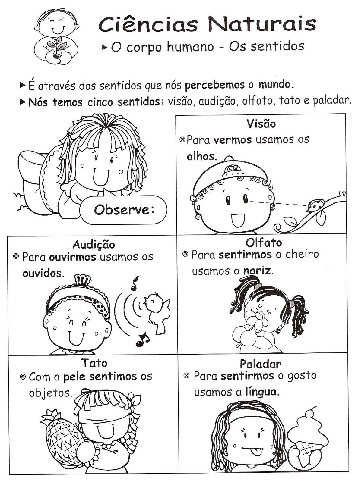 Suficiente Professora Juce: Cinco Sentidos para Educação Infantil JR64