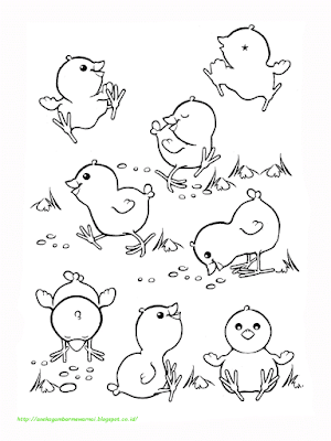 Gambar Mewarnai Ayam - 7