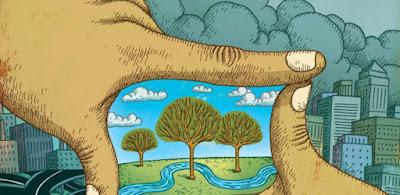 Origen día mundial medio ambiente
