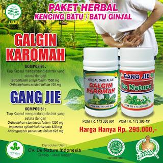 Obat Tradisional Penghancur Batu Ginjal Resep Dokter Di Apotik | PUSAT OBAT HERBAL INDONESIA
