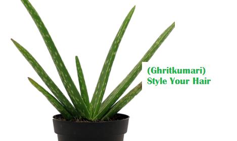 (Ghritkumari) Style Your Hair