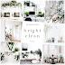 Sobne rastline • bright & clean