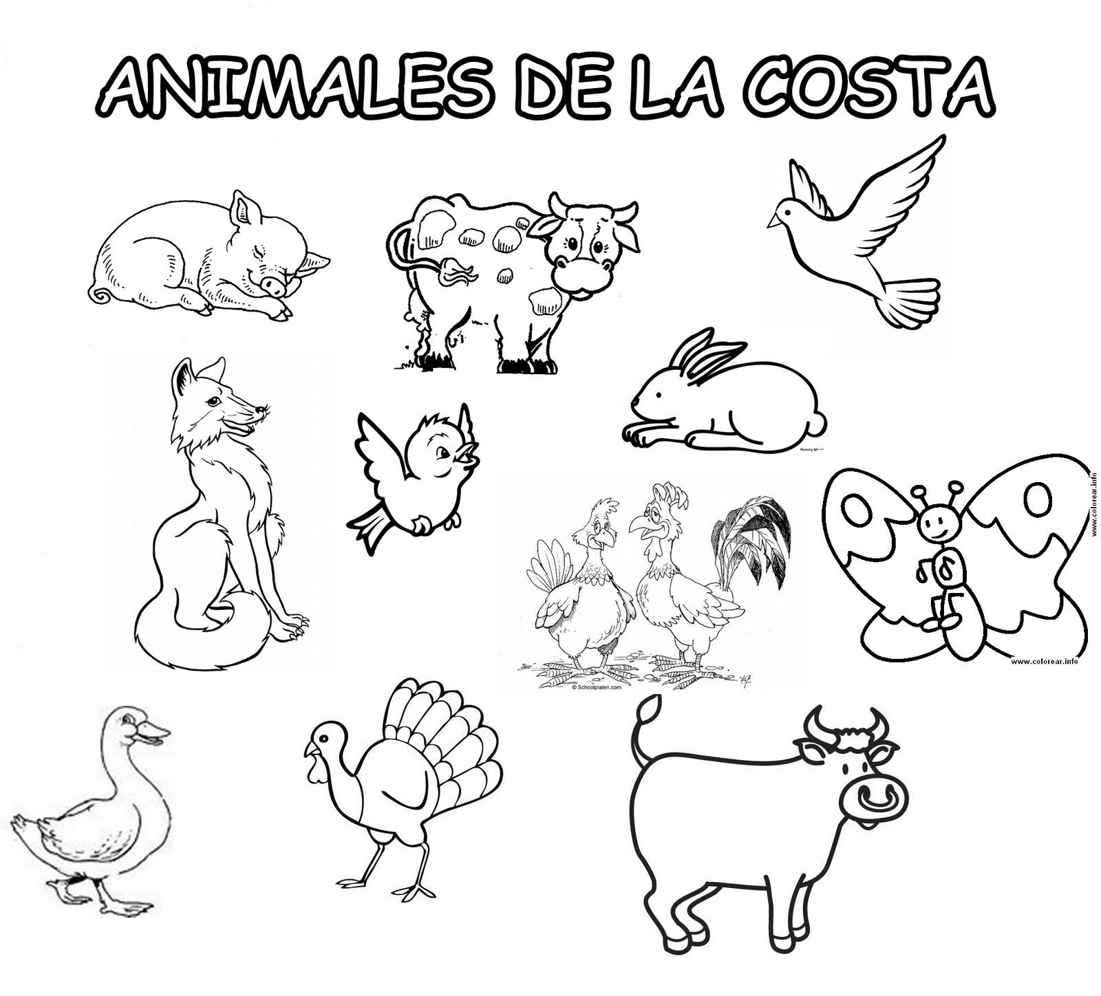 Animales De La Costa Para Pintar Imagui