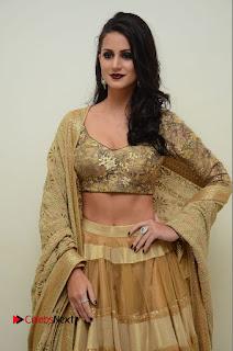 Actress Larissa Bonesi Latest Pictures at Thikka Audio Launch  0033.JPG