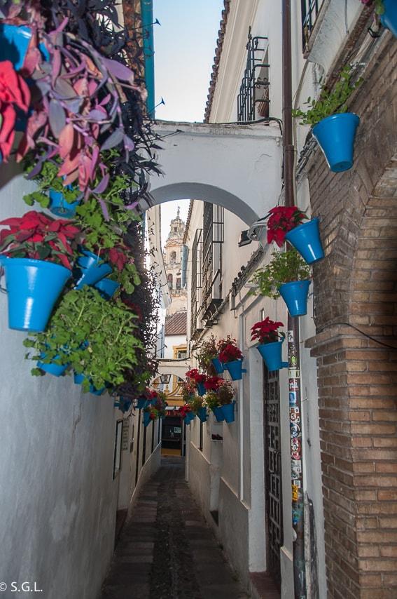 Mezquita y callejon de las flores. Cordoba