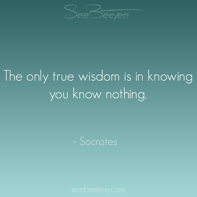 The only true wisdom is in knowing that you know nothing. - Socrates