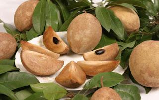 Manfaat dan khasiat buah sawo untuk ibu hamil dan diare