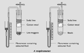 Biology Notes for A level: #96 Using respirometers
