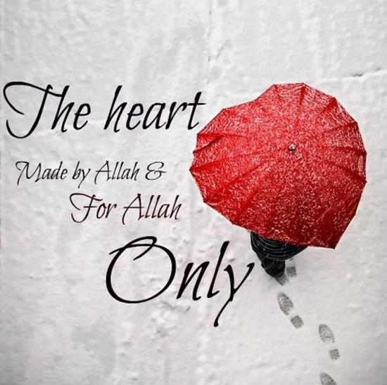 Beautiful Sentence about heart