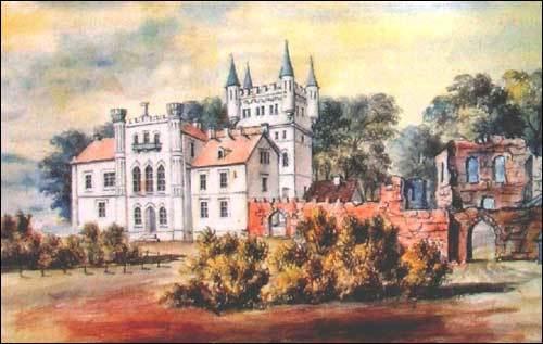 Дворец с развалинами старого замка на рисунке Наполеона Орды
