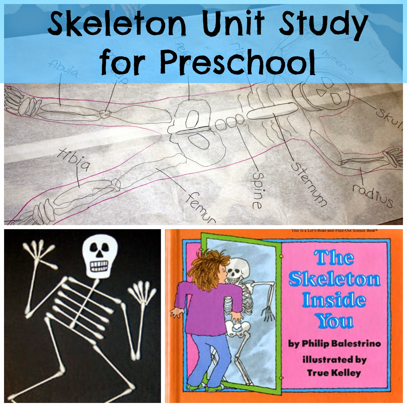 My Homeschooling Journal Skeleton Lesson Plan For Preschool Includes Links To Free Printables