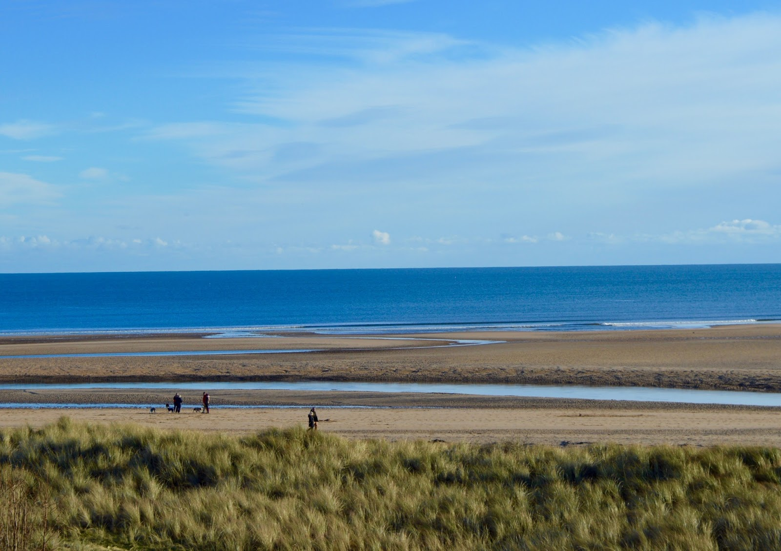 The Best Picnic Spots in Northumberland for Families with Young Children  - Alnmouth