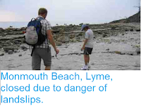https://sciencythoughts.blogspot.com/2012/08/monmouth-beach-lyme-closed-due-to.html
