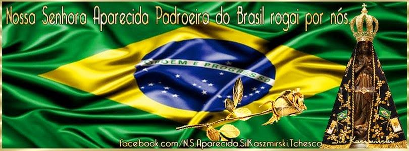 Nossa Senhora Aparecida Padroeira Do Brasil: Nossa Senhora Aparecida Padroeira Do Brasil Rogai Por Nós
