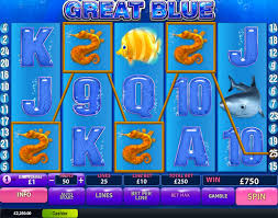 How to get big win when playing Great Blue slot