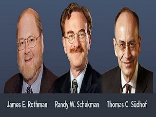 James E. Rothman,Randy W. Schekman; Thomas C. Südhof