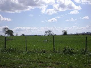 IMAGENS: Paisagens rurais de Lavras do Sul (década de 2000)