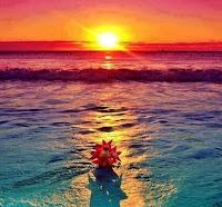les âmes les plus Spirituelles ont besoin de L'Action de La Lumière-Divine, et du feu de l'Esprit-Saint, Le Médiateur de L'Amour et de L'Immaculée Conception De La Lumière.