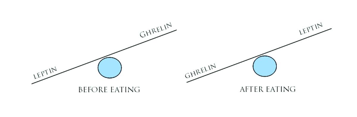 Greliini