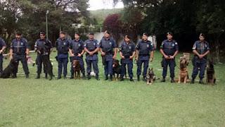 Canil da Guarda Municipal de Itapevi vence torneio nacional