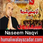 http://www.humaliwalayazadar.com/2016/09/naseem-naqvi-nohay-2017.html