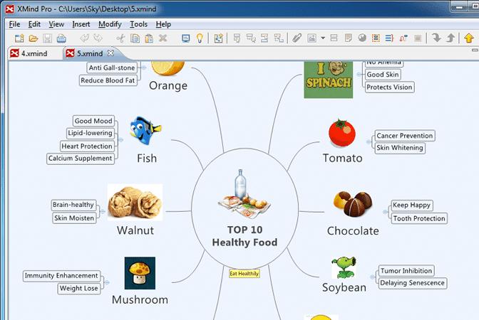 Xmind Software