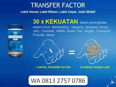 √ Dokumen Rahasia ✅ Sistem Imun ⭐ 4life Transfer Factor