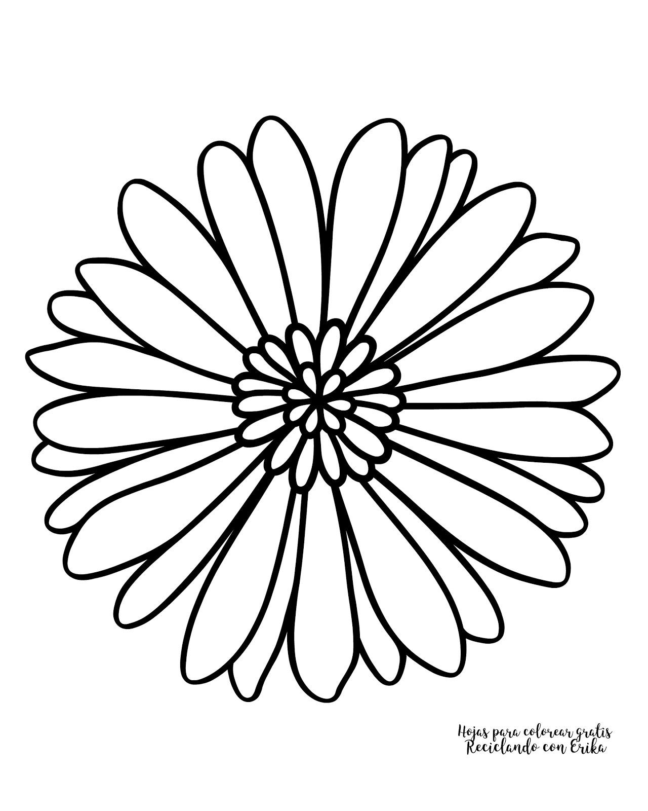 Reciclando con Erika : Hojas para COLOREAR de flores
