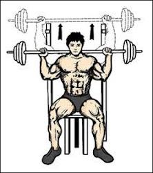 Shoulder press assis