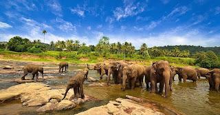 5 tempat Wisata Primadonanya Lampung