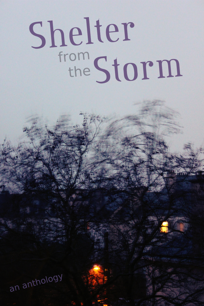 Shelter From Storm With Devices >> Black Beacon Books Shelter From The Storm