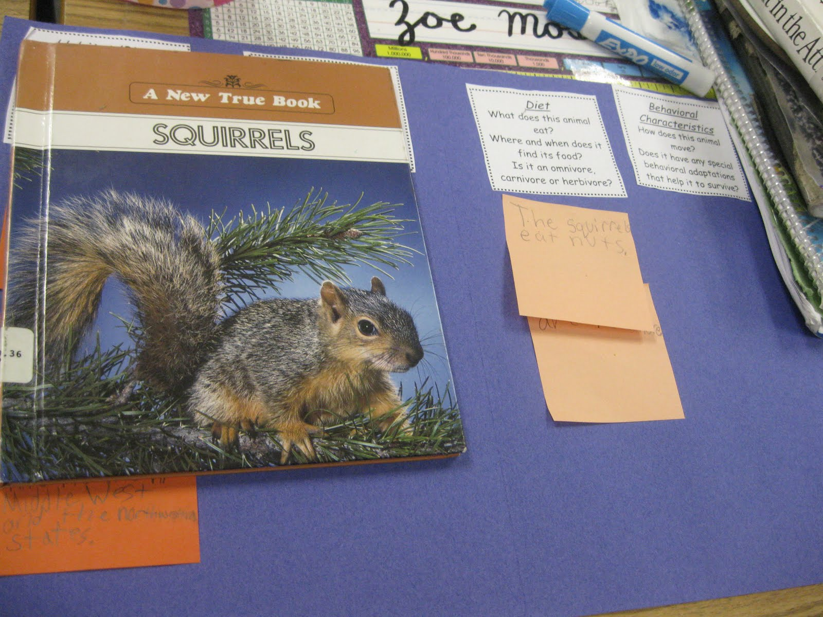 Third Grade Thinkers Animal Research Folder A Fact
