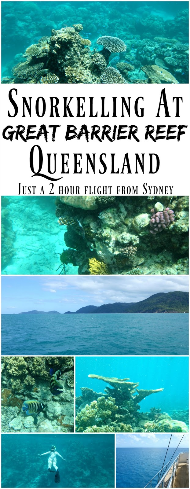 Pin For Later: Fly from Sydney to Cairns and spend a weekend snorkelling on the famous Great Barrier Reef! Cairns is just a two hour flight from Sydney, and you can book a day trip out to the reef for snorkelling. The world underwater is incredible and very varied depending on which reef you visit!